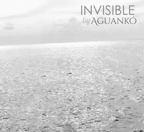 Invisible-500